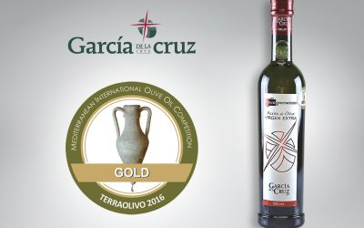 Gold Medal for our 5 Generation at the TerraOlivo Contest in Jerusalem